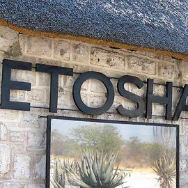 Etosha Lodge Safari